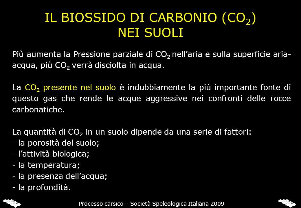 IL BIOSSIDO DI CARBONIO (CO 2 ) NEI SUOLI Più aumenta la Pressione parziale di CO 2 nellaria e sulla superficie aria- acqua, più CO 2 verrà disciolta