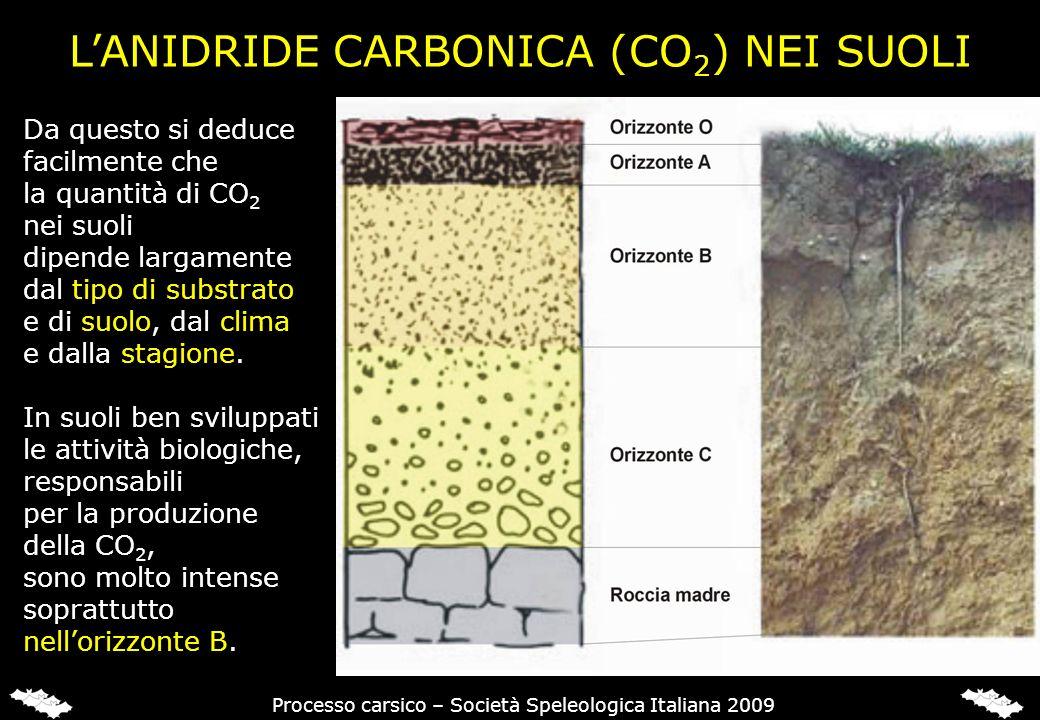 Da questo si deduce facilmente che la quantità di CO 2 nei suoli dipende largamente dal tipo di substrato e di suolo, dal clima e dalla stagione. In s