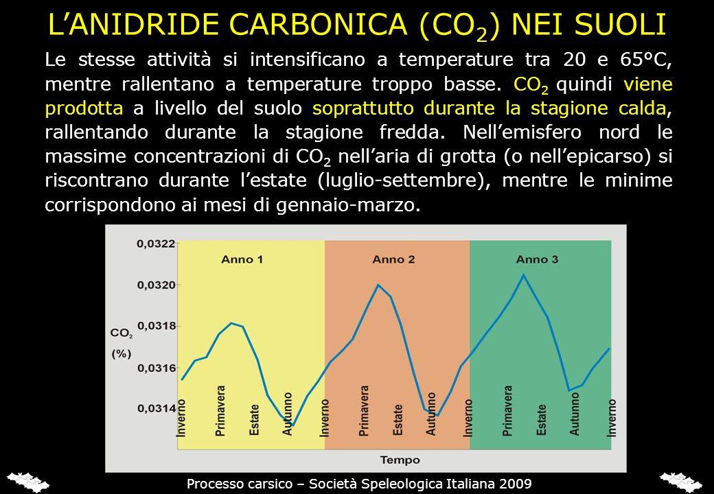 Le stesse attività si intensificano a temperature tra 20 e 65°C, mentre rallentano a temperature troppo basse. CO 2 quindi viene prodotta a livello de