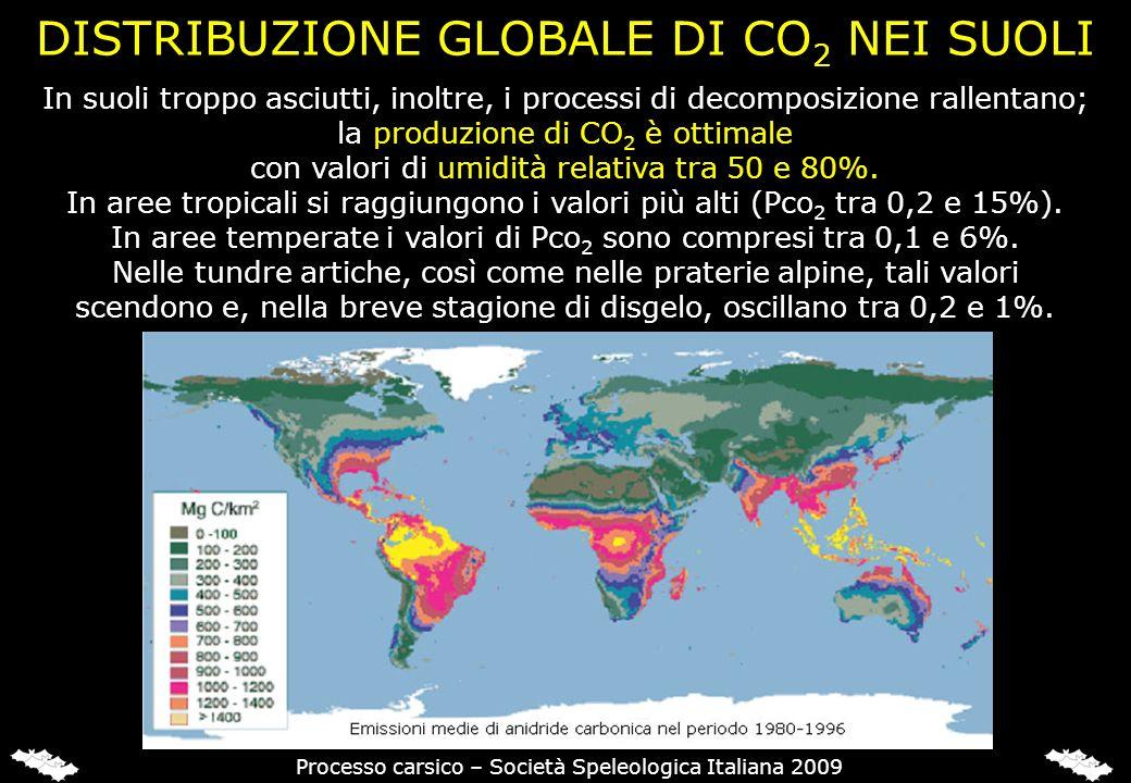 In suoli troppo asciutti, inoltre, i processi di decomposizione rallentano; la produzione di CO 2 è ottimale con valori di umidità relativa tra 50 e 8