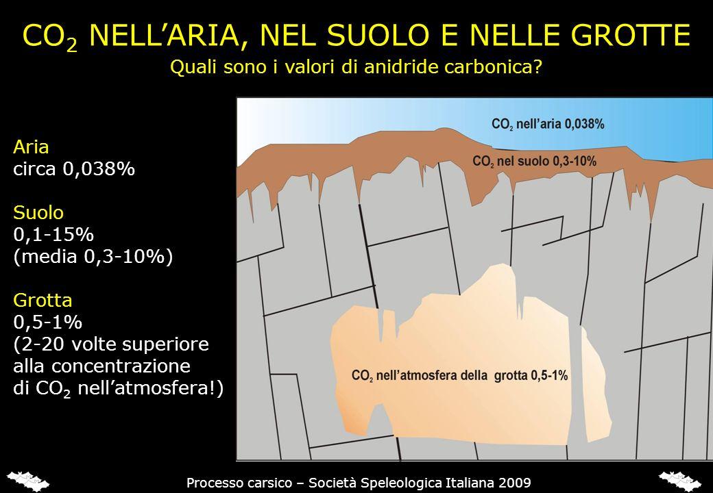CO 2 NELLARIA, NEL SUOLO E NELLE GROTTE Aria circa 0,038% Suolo 0,1-15% (media 0,3-10%) Grotta 0,5-1% (2-20 volte superiore alla concentrazione di CO