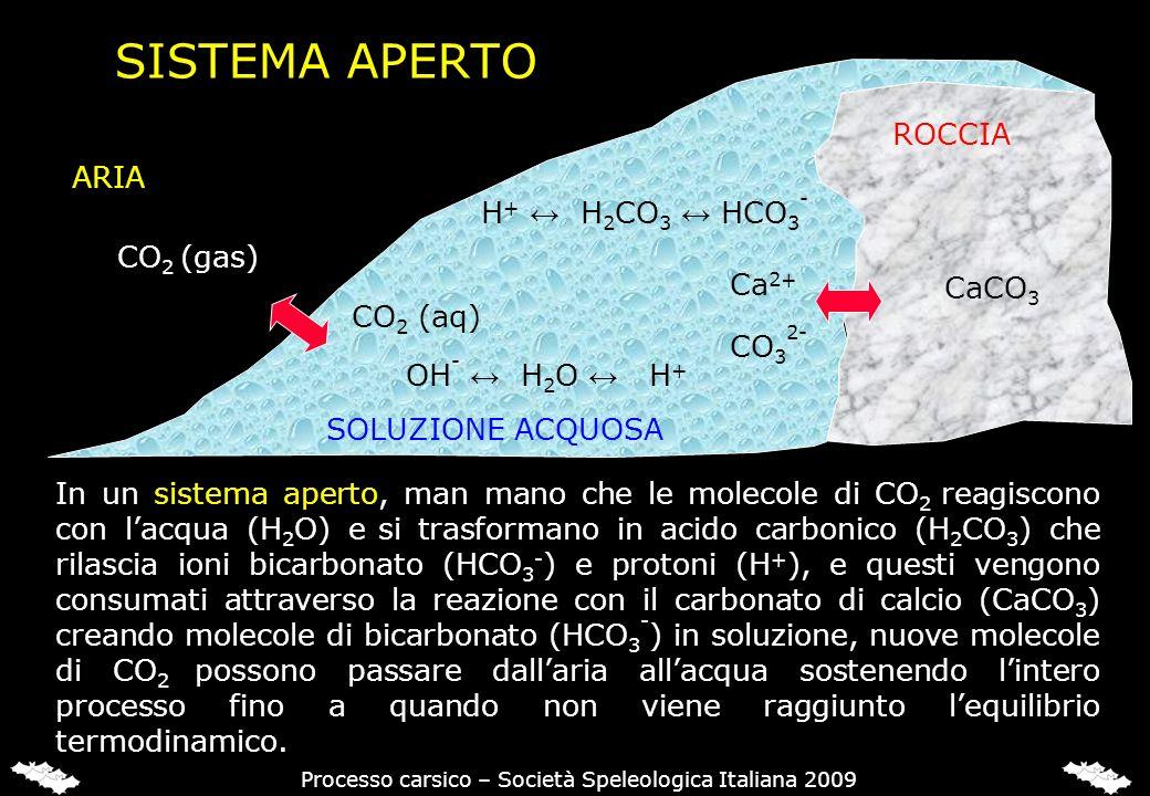 SISTEMA APERTO CO 2 (gas) CaCO 3 ARIA SOLUZIONE ACQUOSA ROCCIA CO 2 (aq) OH - H 2 O H + Ca 2+ H + H 2 CO 3 HCO 3 - CO 3 2- Processo carsico – Società