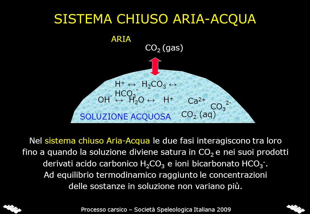 SISTEMA CHIUSO ARIA-ACQUA SOLUZIONE ACQUOSA CO 2 (aq) OH - H 2 O H + Ca 2+ H + H 2 CO 3 HCO 3 - CO 3 2- Processo carsico – Società Speleologica Italia
