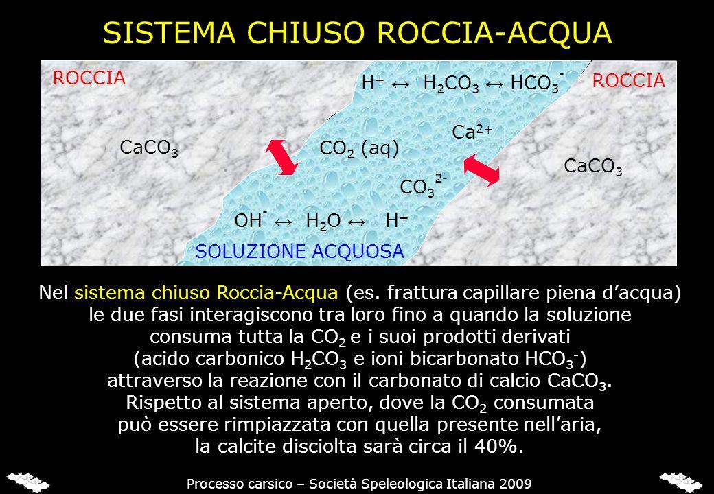 SISTEMA CHIUSO ROCCIA-ACQUA CaCO 3 ROCCIA CO 2 (aq) OH - H 2 O H + Ca 2+ H + H 2 CO 3 HCO 3 - CO 3 2- Processo carsico – Società Speleologica Italiana