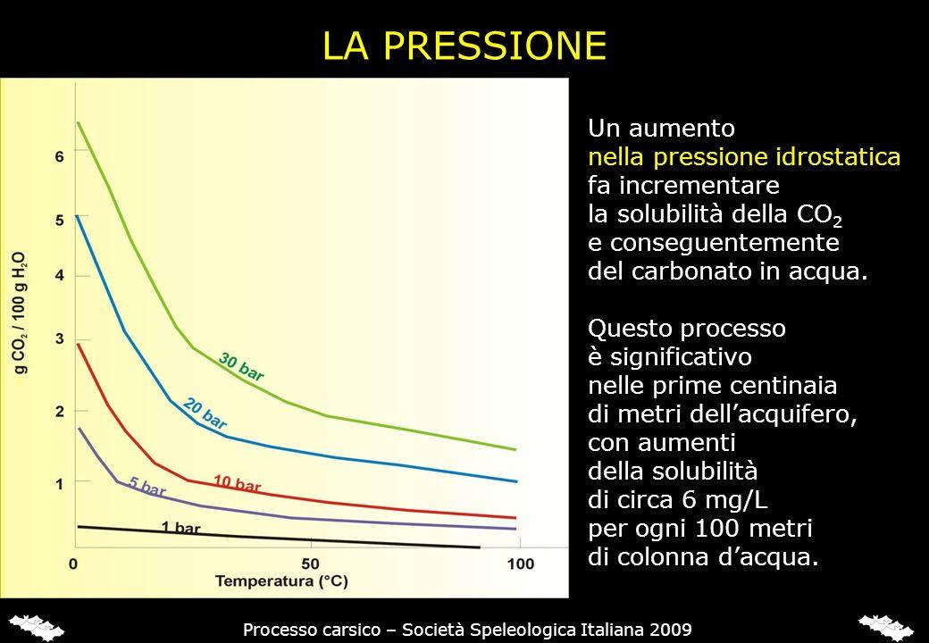 LA PRESSIONE Un aumento nella pressione idrostatica fa incrementare la solubilità della CO 2 e conseguentemente del carbonato in acqua. Questo process