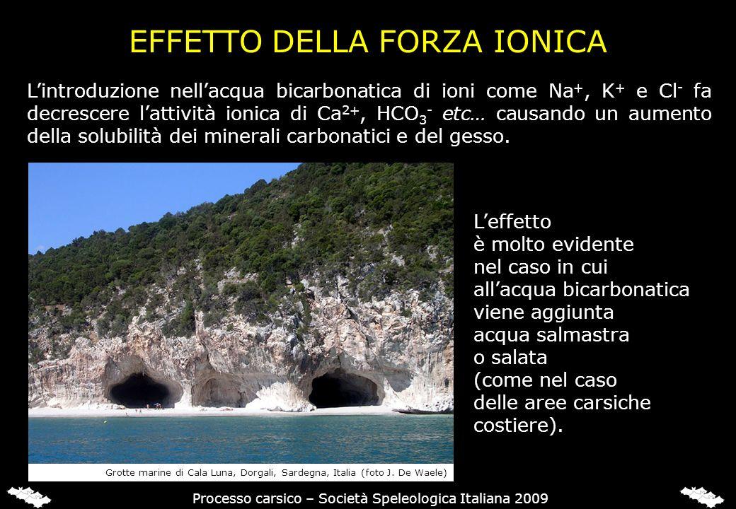 EFFETTO DELLA FORZA IONICA Lintroduzione nellacqua bicarbonatica di ioni come Na +, K + e Cl - fa decrescere lattività ionica di Ca 2+, HCO 3 - etc… c
