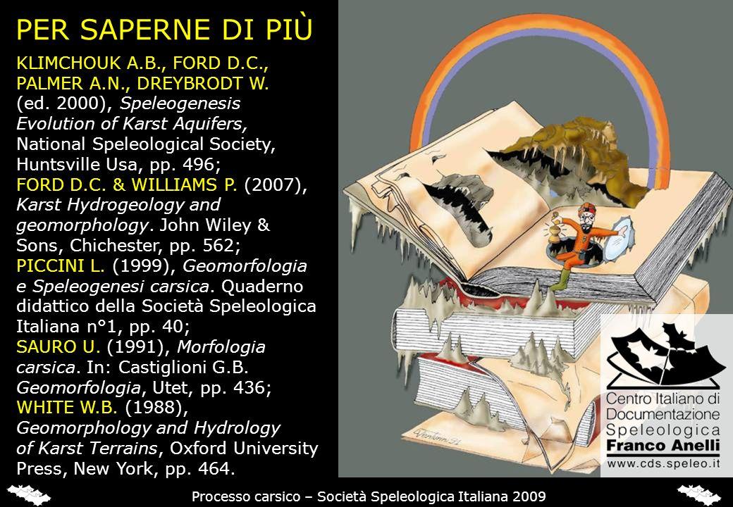 PER SAPERNE DI PIÙ KLIMCHOUK A.B., FORD D.C., PALMER A.N., DREYBRODT W. (ed. 2000), Speleogenesis Evolution of Karst Aquifers, National Speleological