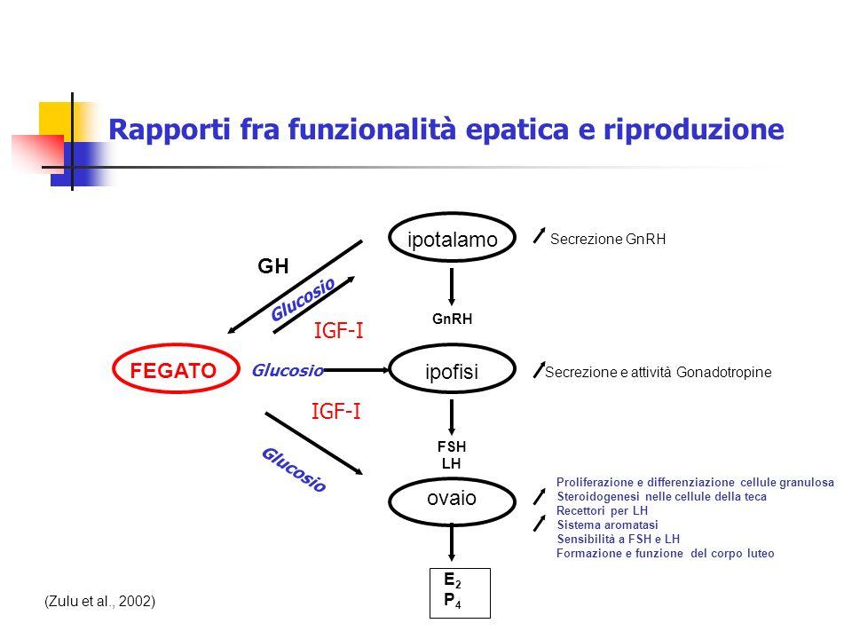 FEGATO ipotalamo ipofisi ovaio GH E2P4E2P4 Proliferazione e differenziazione cellule granulosa Steroidogenesi nelle cellule della teca Recettori per L