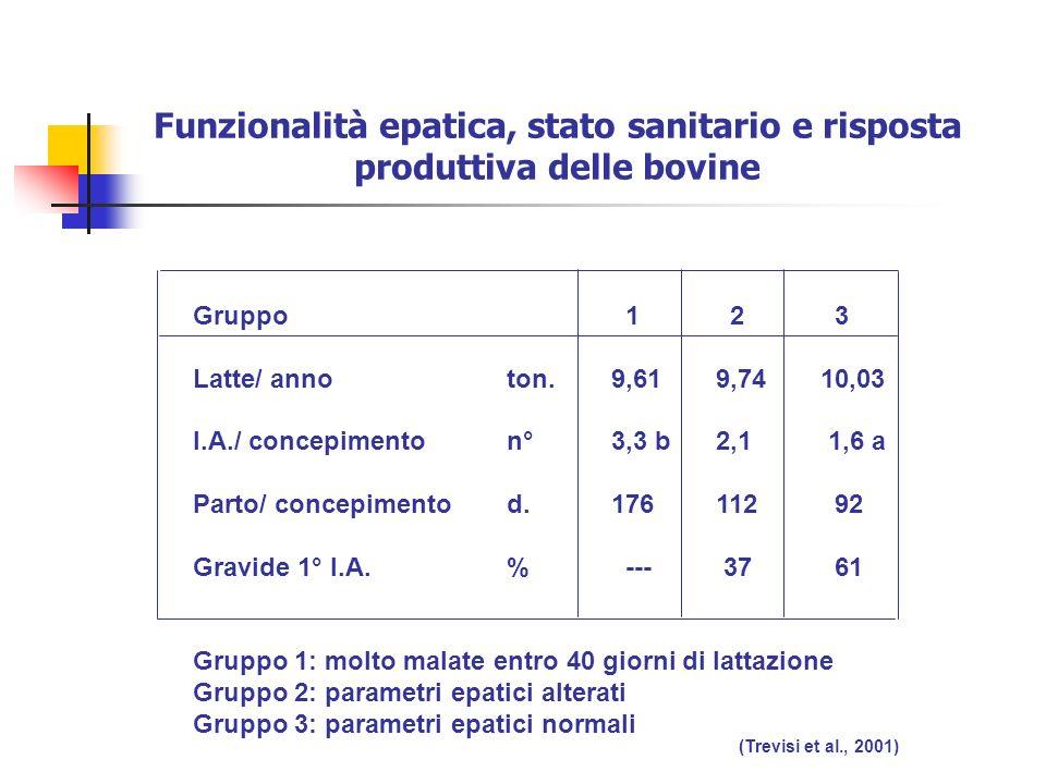 Funzionalità epatica, stato sanitario e risposta produttiva delle bovine Gruppo 1 2 3 Latte/ annoton.9,619,7410,03 I.A./ concepimenton°3,3 b2,1 1,6 a