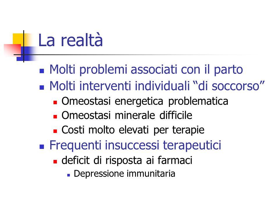 La realtà Molti problemi associati con il parto Molti interventi individuali di soccorso Omeostasi energetica problematica Omeostasi minerale difficil