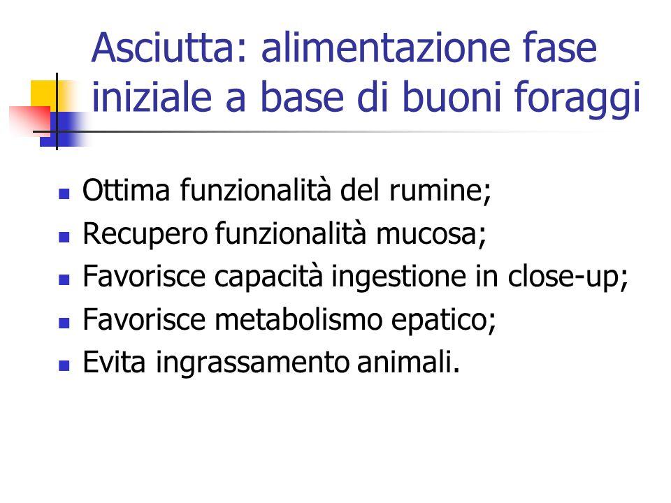 Asciutta: alimentazione fase iniziale a base di buoni foraggi Ottima funzionalità del rumine; Recupero funzionalità mucosa; Favorisce capacità ingesti