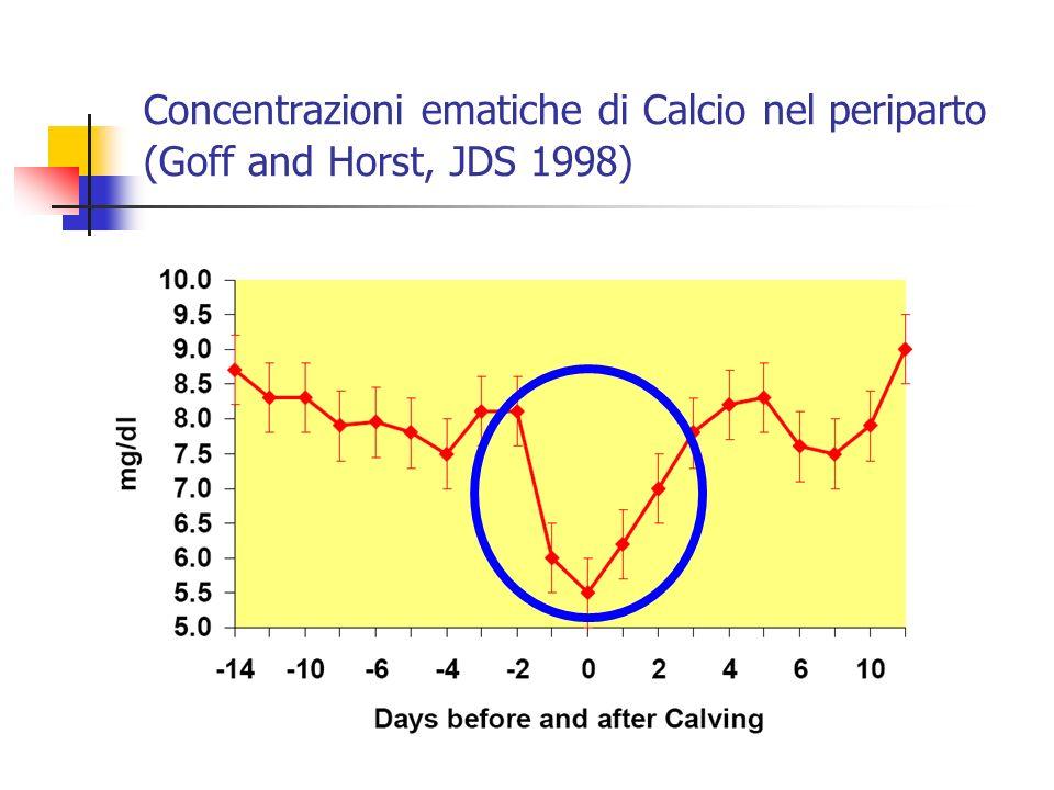 Concentrazioni ematiche di Calcio nel periparto (Goff and Horst, JDS 1998)