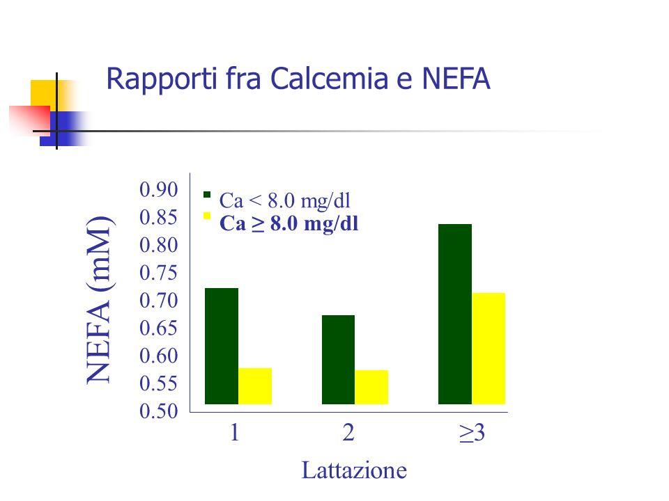 0.50 0.55 0.60 0.65 0.70 0.75 0.80 0.85 0.90 123 Lattazione NEFA (mM) Ca < 8.0 mg/dl Ca 8.0 mg/dl Rapporti fra Calcemia e NEFA
