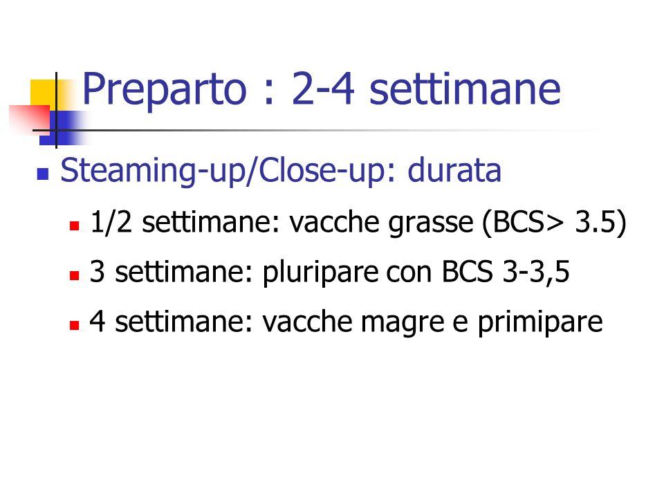 Preparto : 2-4 settimane Steaming-up/Close-up: durata 1/2 settimane: vacche grasse (BCS> 3.5) 3 settimane: pluripare con BCS 3-3,5 4 settimane: vacche