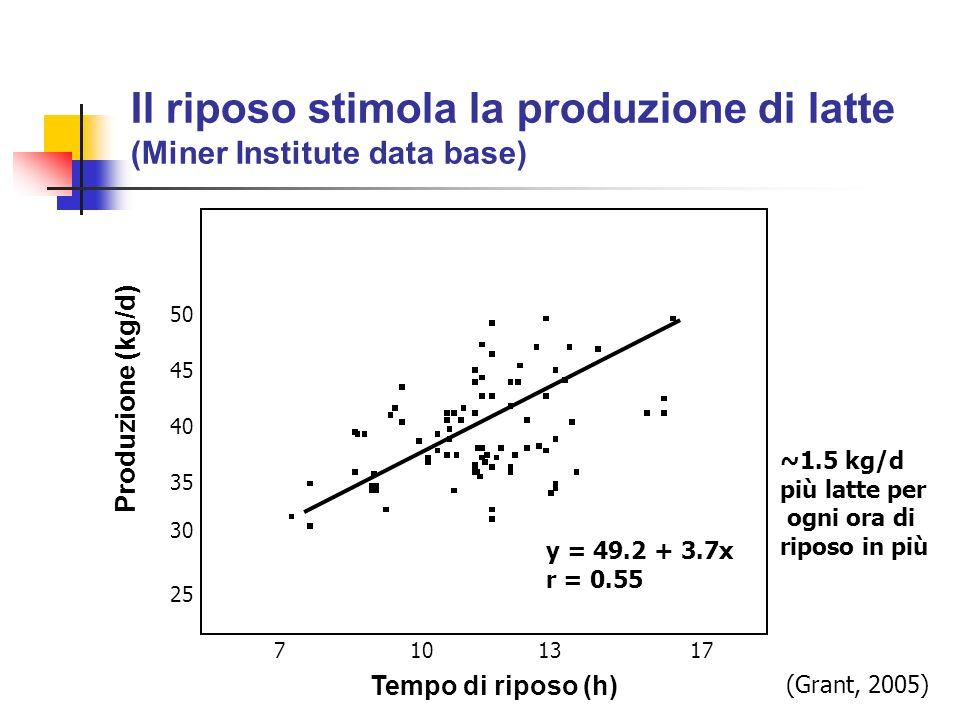 Il riposo stimola la produzione di latte (Miner Institute data base) Tempo di riposo (h) Produzione (kg/d) 25 30 35 40 45 50 7101317 y = 49.2 + 3.7x r