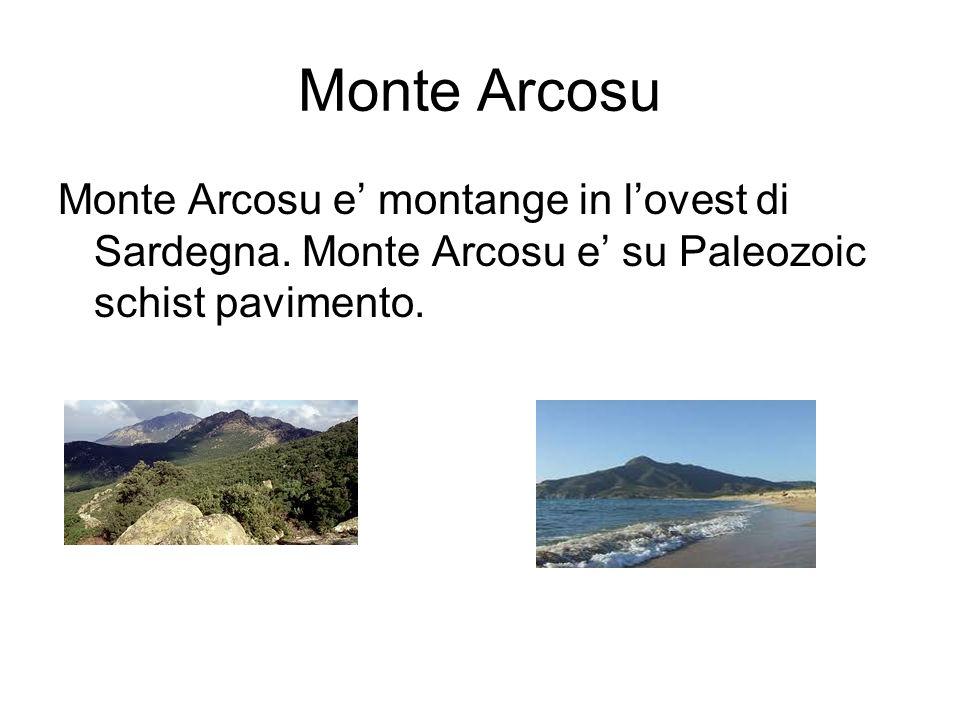 Monte Arcosu Monte Arcosu e montange in lovest di Sardegna. Monte Arcosu e su Paleozoic schist pavimento.