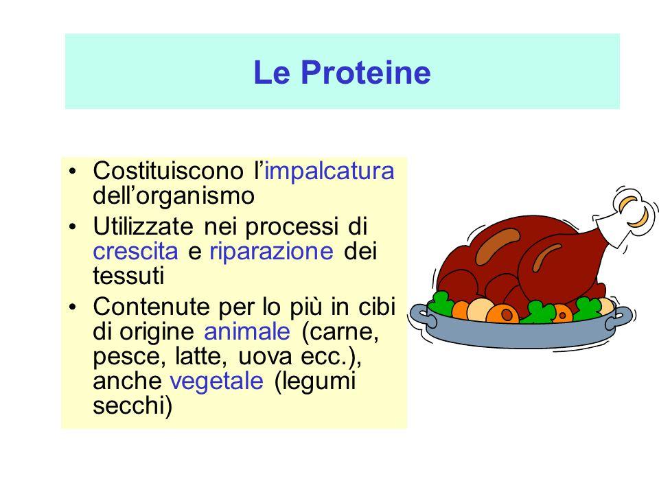 Le Proteine Costituiscono limpalcatura dellorganismo Utilizzate nei processi di crescita e riparazione dei tessuti Contenute per lo più in cibi di ori