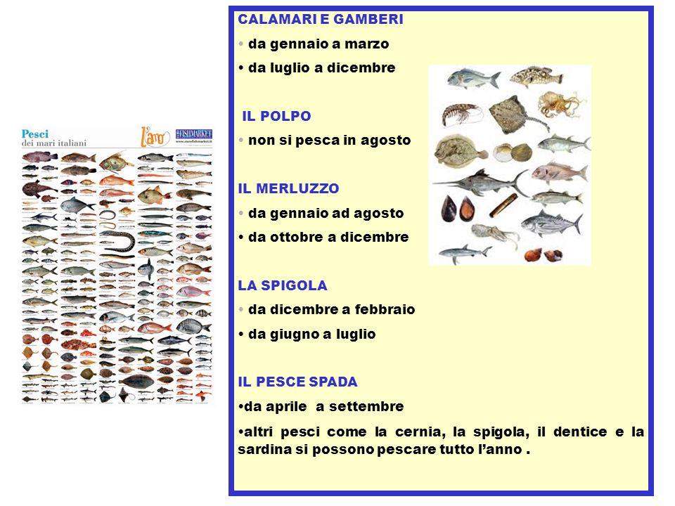 CALAMARI E GAMBERI da gennaio a marzo da luglio a dicembre IL POLPO non si pesca in agosto IL MERLUZZO da gennaio ad agosto da ottobre a dicembre LA S