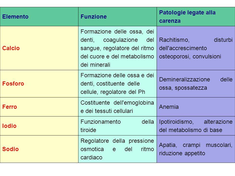 ElementoFunzione Patologie legate alla carenza Calcio Formazione delle ossa, dei denti, coagulazione del sangue, regolatore del ritmo del cuore e del