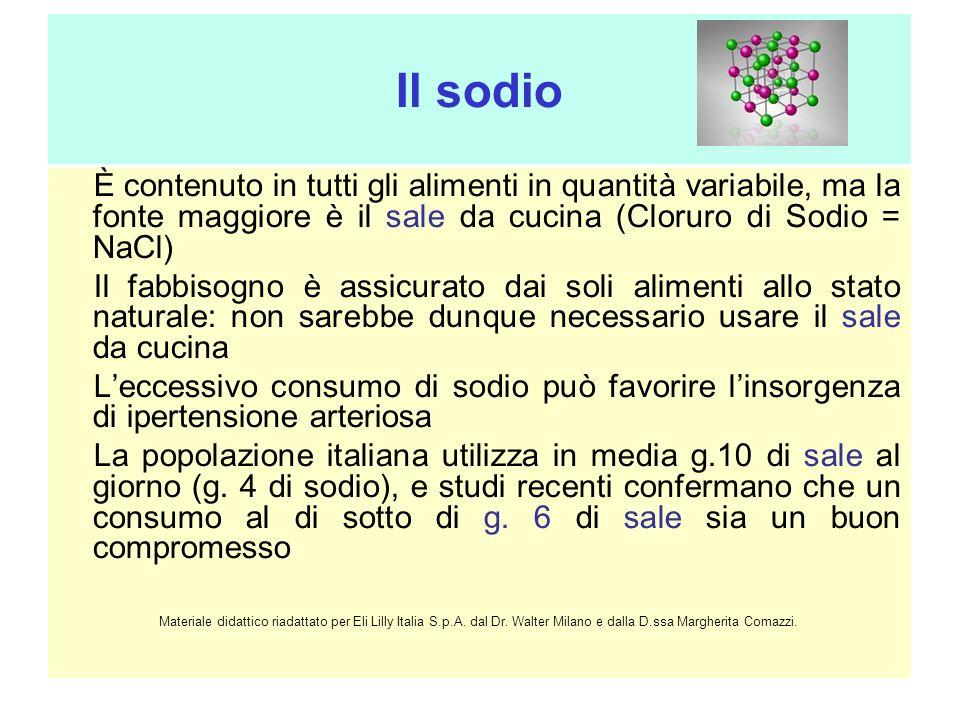 Il sodio È contenuto in tutti gli alimenti in quantità variabile, ma la fonte maggiore è il sale da cucina (Cloruro di Sodio = NaCl) Il fabbisogno è a
