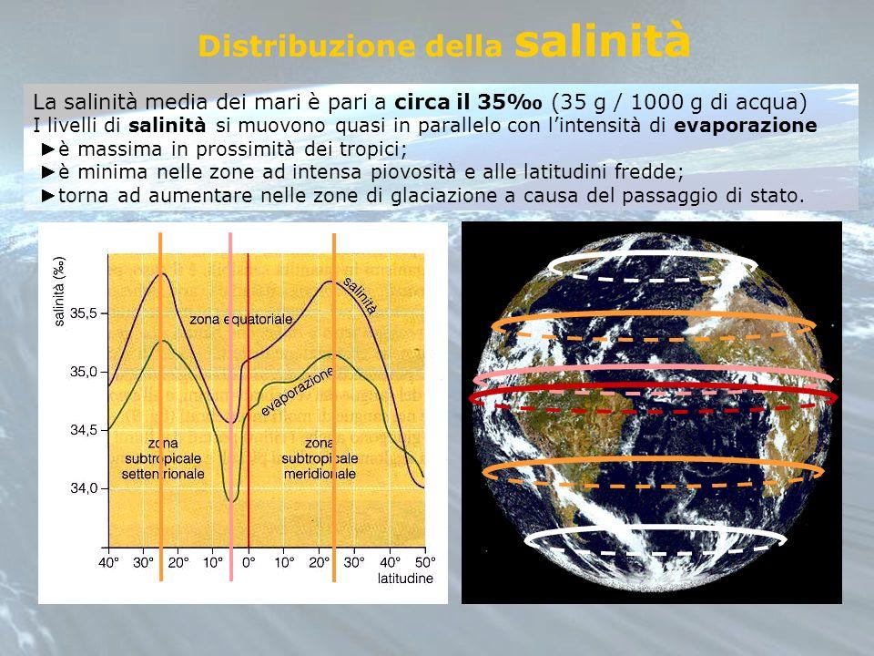 La salinità media dei mari è pari a circa il 35 (35 g / 1000 g di acqua) I livelli di salinità si muovono quasi in parallelo con lintensità di evapora