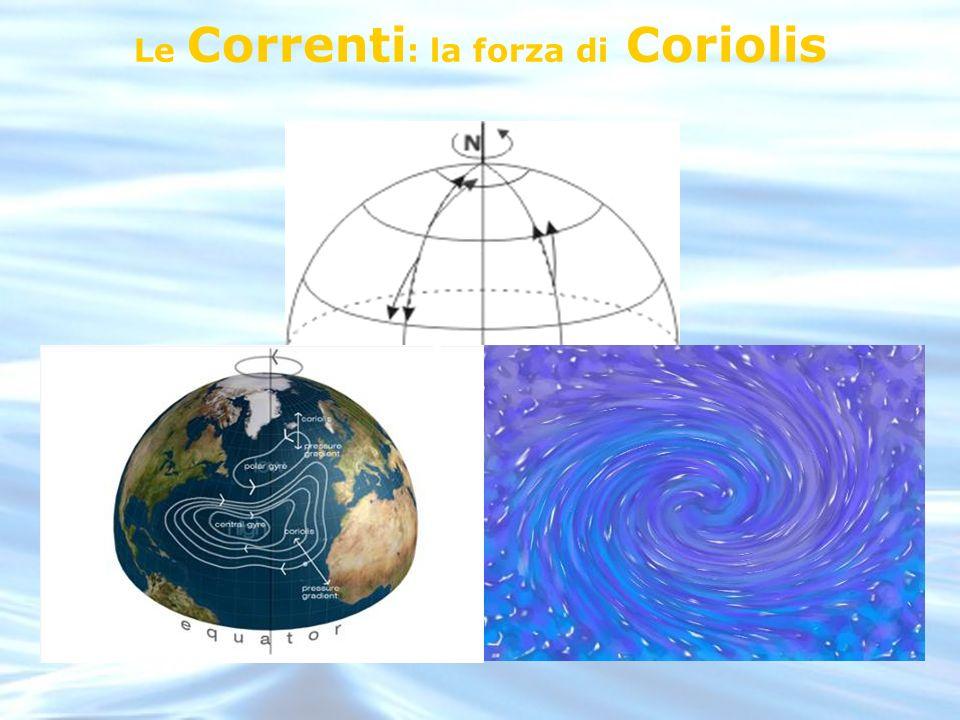 Le Correnti : la forza di Coriolis