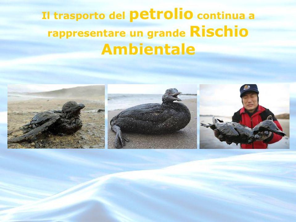 Il trasporto del petrolio continua a rappresentare un grande Rischio Ambientale