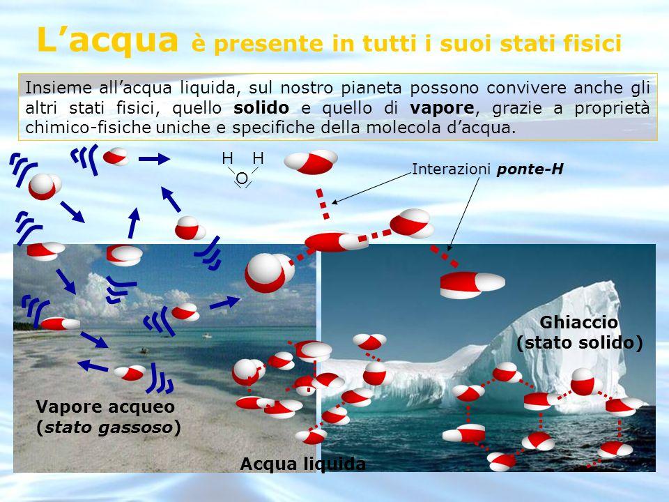 Insieme allacqua liquida, sul nostro pianeta possono convivere anche gli altri stati fisici, quello solido e quello di vapore, grazie a proprietà chim