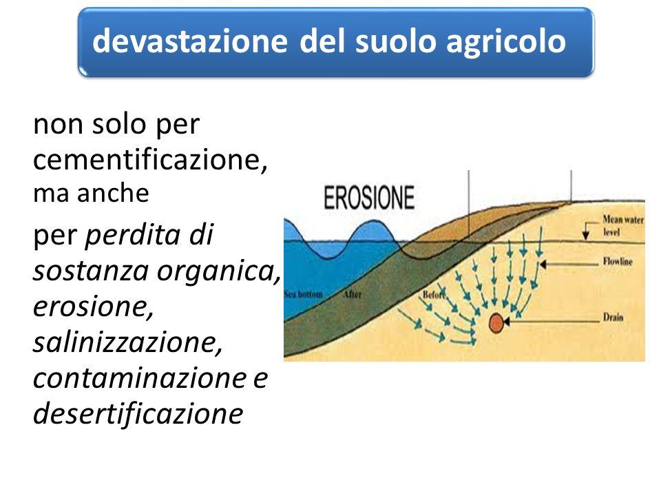 devastazione del suolo agricolo non solo per cementificazione, ma anche per perdita di sostanza organica, erosione, salinizzazione, contaminazione e desertificazione