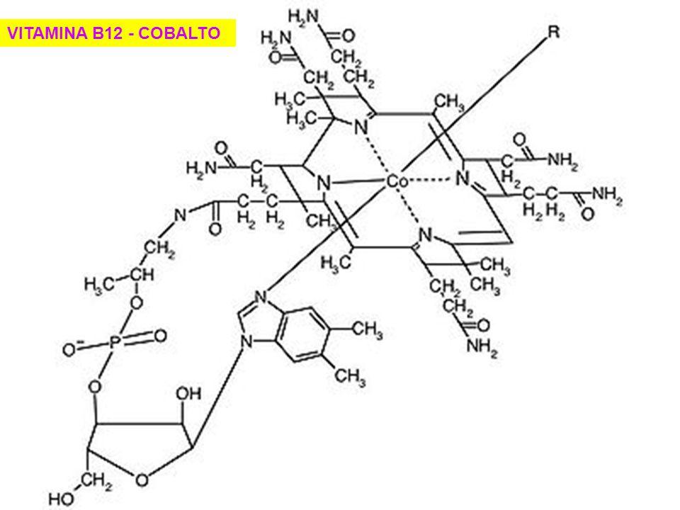 VITAMINA B12 - COBALTO
