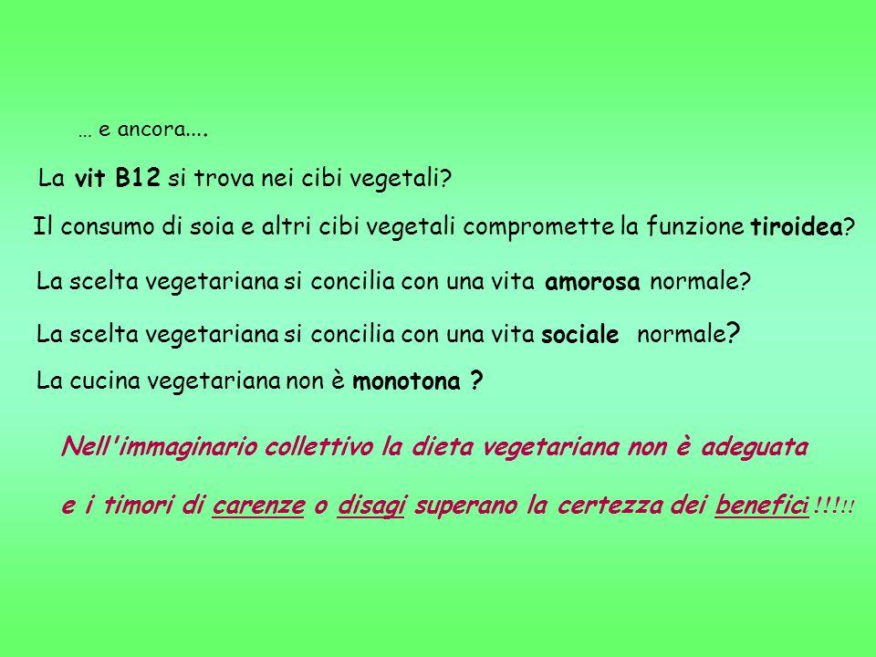 La scelta vegetariana si concilia con una vita amorosa normale? ( possibile carenza di zinco?)