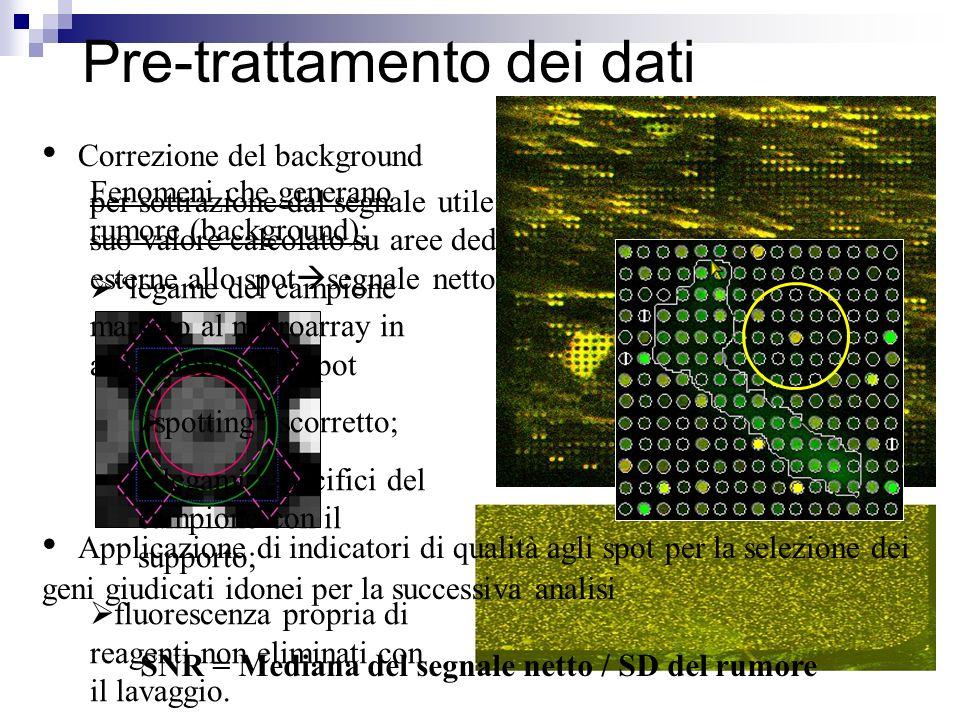 per sottrazione dal segnale utile del suo valore calcolato su aree dedicate esterne allo spot segnale netto Fenomeni che generano rumore (background):