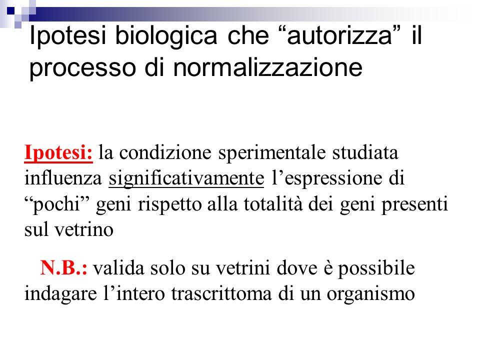 Ipotesi biologica che autorizza il processo di normalizzazione Ipotesi: la condizione sperimentale studiata influenza significativamente lespressione