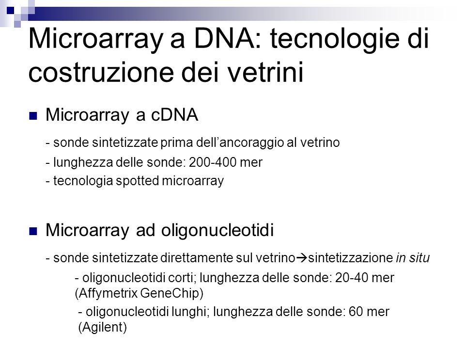 Microarray a DNA: tecnologie di costruzione dei vetrini Microarray a cDNA - sonde sintetizzate prima dellancoraggio al vetrino - lunghezza delle sonde