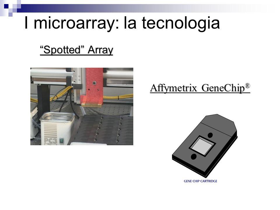 I microarray: la tecnologia Spotted Array Affymetrix GeneChip ®