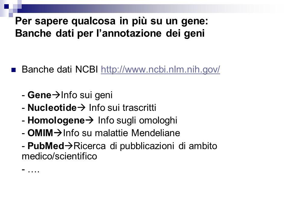 Per sapere qualcosa in più su un gene: Banche dati per lannotazione dei geni Banche dati NCBI http://www.ncbi.nlm.nih.gov/http://www.ncbi.nlm.nih.gov/