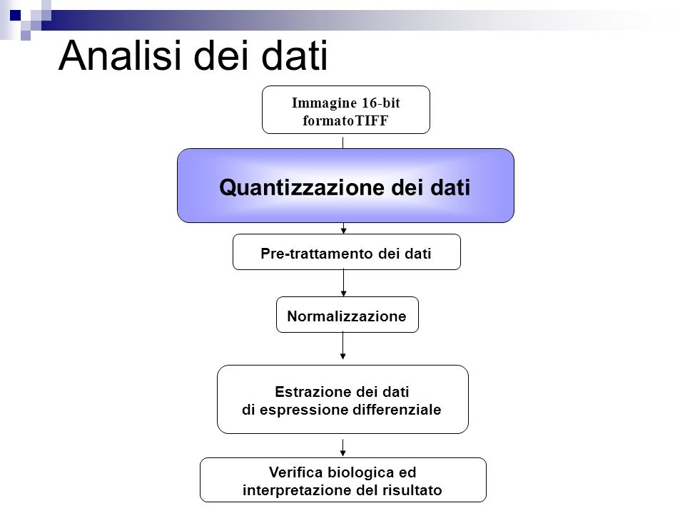 PathwayExpress : http://vortex.cs.wayne.edu/projects.htmhttp://vortex.cs.wayne.edu/projects.htm Impact Analysis: mappatura dei geni differenzialmente espressi nei pathway molecolari e valutazione della propagazione della perturbazione della trasduzione del segnale genico provocata dalla variazione di espressione genica
