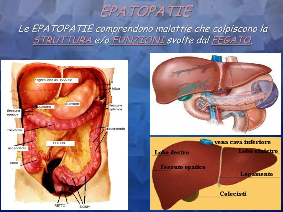 EPATOPATIE Le EPATOPATIE comprendono malattie che colpiscono la STRUTTURA e/o FUNZIONI svolte dal FEGATO.