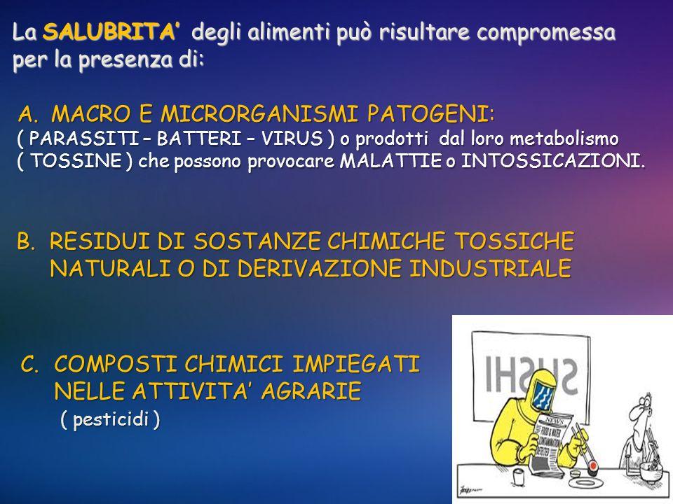 La SALUBRITA degli alimenti può risultare compromessa per la presenza di: A.MACRO E MICRORGANISMI PATOGENI: ( PARASSITI – BATTERI – VIRUS ) o prodotti