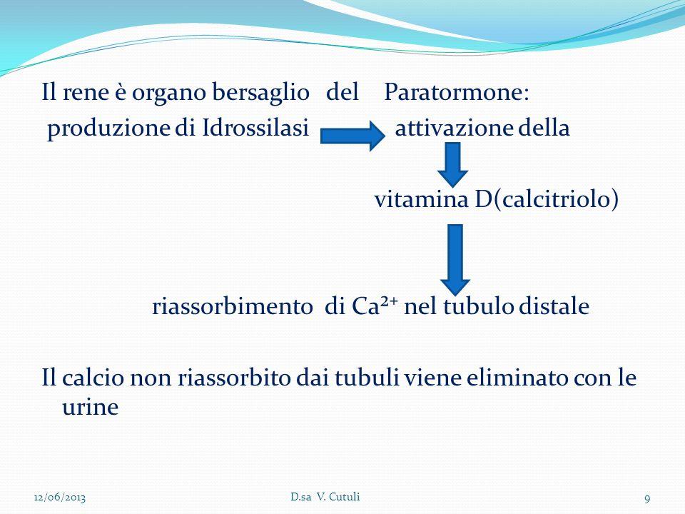 Il rene è organo bersaglio del Paratormone: produzione di Idrossilasi attivazione della vitamina D(calcitriolo) riassorbimento di Ca² nel tubulo dista