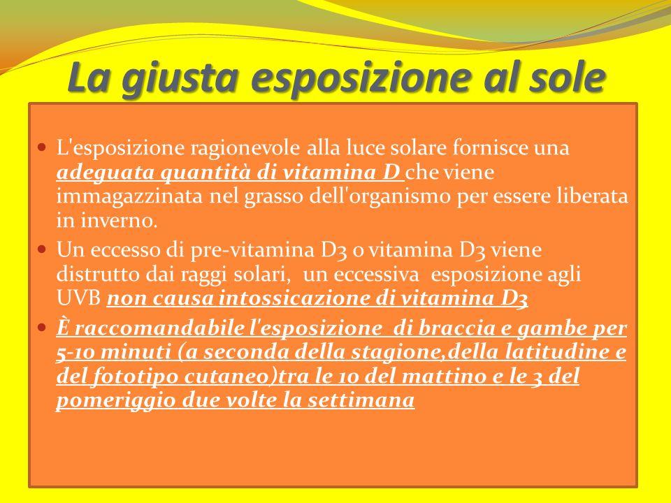 La giusta esposizione al sole L'esposizione ragionevole alla luce solare fornisce una adeguata quantità di vitamina D che viene immagazzinata nel gras