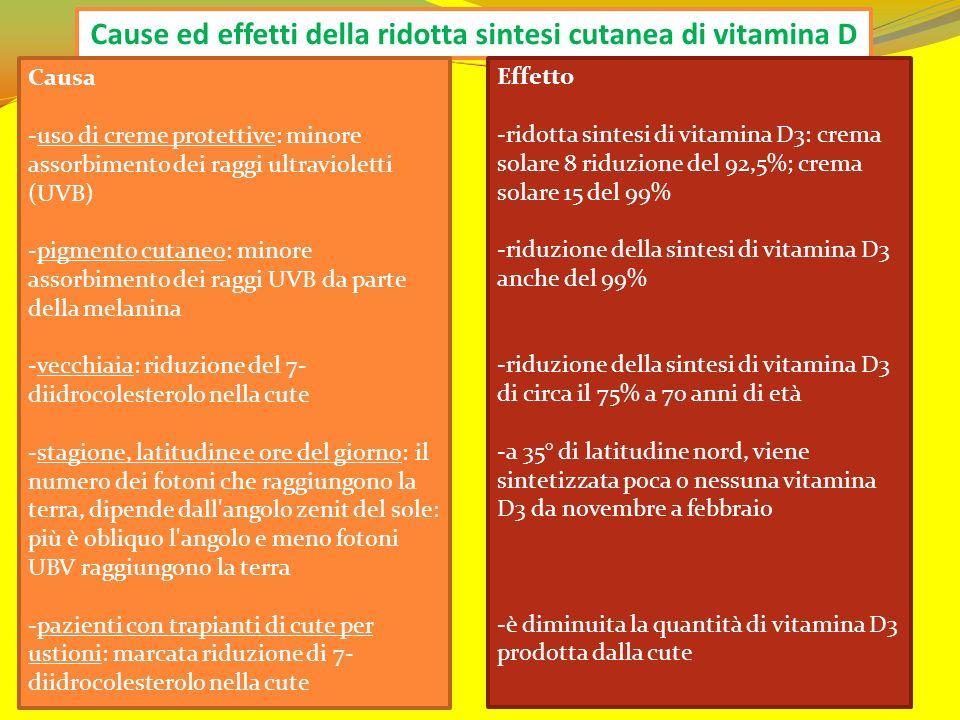 Cause ed effetti della ridotta sintesi cutanea di vitamina D Causa -uso di creme protettive: minore assorbimento dei raggi ultravioletti (UVB) -pigmen