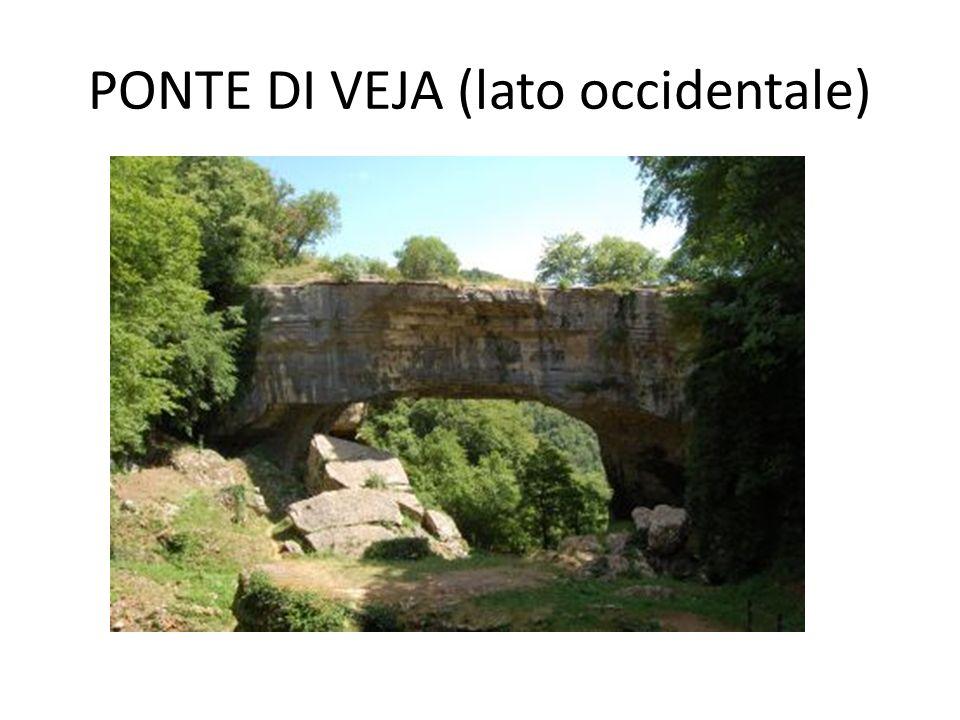 IL PONTE DI VEJA L arco naturale del Ponte di Veja è situato a 600 metri di quota nell Altopiano dei Monti Lessini, in provincia di Verona, a 27 chilometri dalla città, via Negrar e a 6 da S.