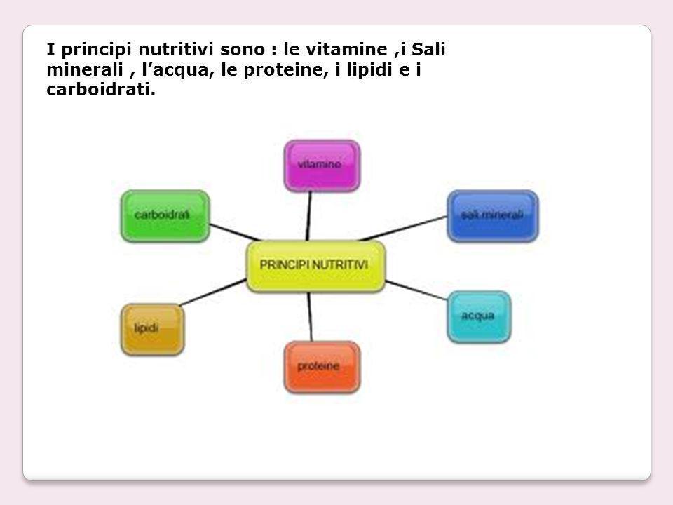 I principi nutritivi sono : le vitamine,i Sali minerali, lacqua, le proteine, i lipidi e i carboidrati.