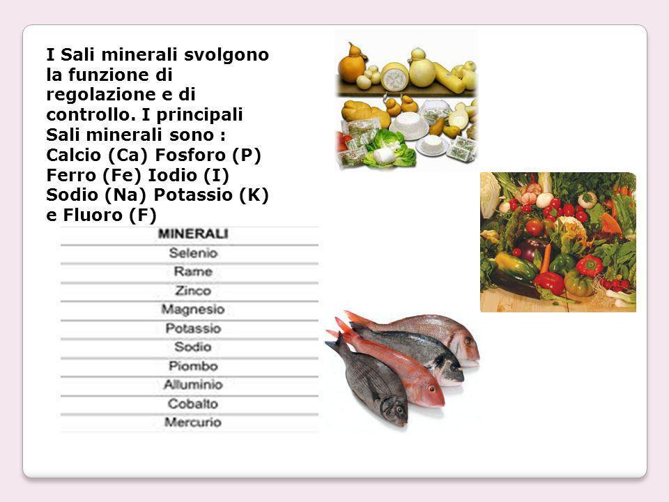 I Sali minerali svolgono la funzione di regolazione e di controllo. I principali Sali minerali sono : Calcio (Ca) Fosforo (P) Ferro (Fe) Iodio (I) Sod