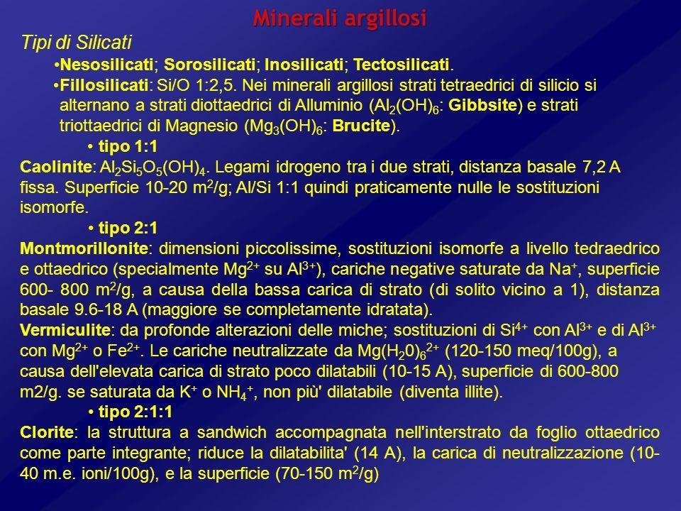 Minerali argillosi Tipi di Silicati Nesosilicati; Sorosilicati; Inosilicati; Tectosilicati. Fillosilicati: Si/O 1:2,5. Nei minerali argillosi strati t