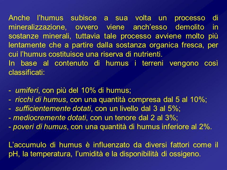 Anche lhumus subisce a sua volta un processo di mineralizzazione, ovvero viene anchesso demolito in sostanze minerali, tuttavia tale processo avviene