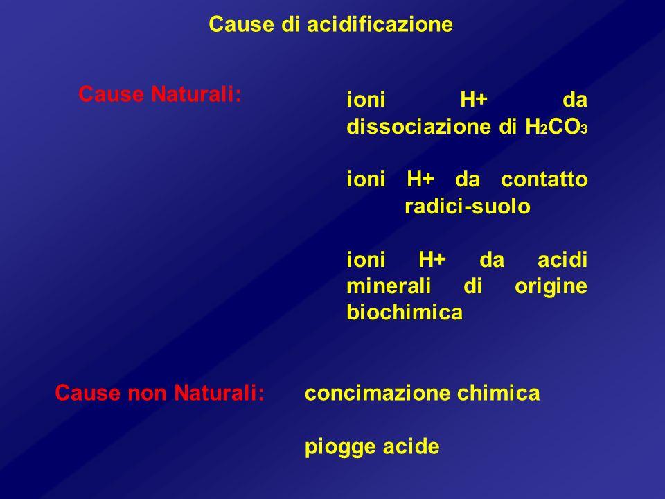 Cause di acidificazione Cause Naturali: ioni H+ da dissociazione di H 2 CO 3 ioni H+ da contatto radici-suolo ioni H+ da acidi minerali di origine bio