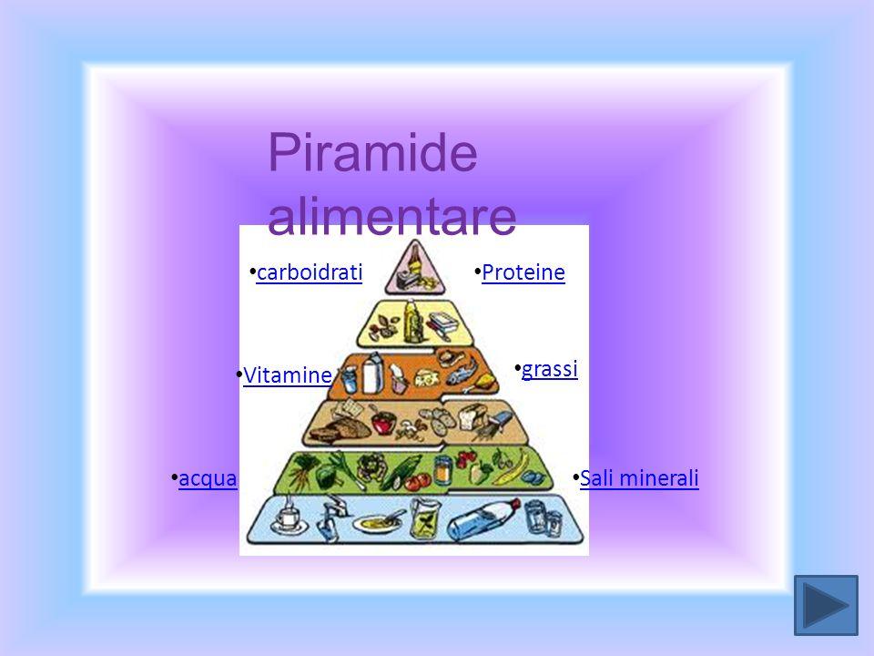 proteine carboidrati grassi Sali minerali Vitamine Proteine acqua Piramide alimentare