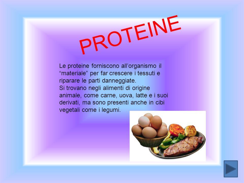 PROTEINE Le proteine forniscono allorganismo il materiale per far crescere i tessuti e riparare le parti danneggiate. Si trovano negli alimenti di ori